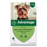 Advantage 40   Hond tot 4kg   4 pipetten