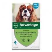 Advantage 100 | Hond 4-10kg | 4 pipetten