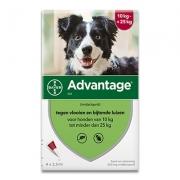 Advantage 250 | Hond 10-25kg | 4 pipetten