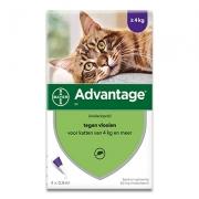 Advantage 80 | Chat 4-8 kg | 4 pipettes